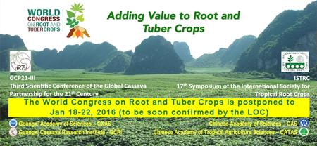 ราคาพืชดันดัชนีขยับ ภาพรวมรายได้เกษตรกรเดือน ก.พ. ดีขึ้น จากข้าว-มันสำปะหลัง (ข่าววันที่ 15 มีนาคม 2562)