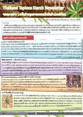 เครือข่ายอุตสาหกรรมแป้งมันสำปะหลังไทย<br> ปีที่ 1 ฉบับที่ 4